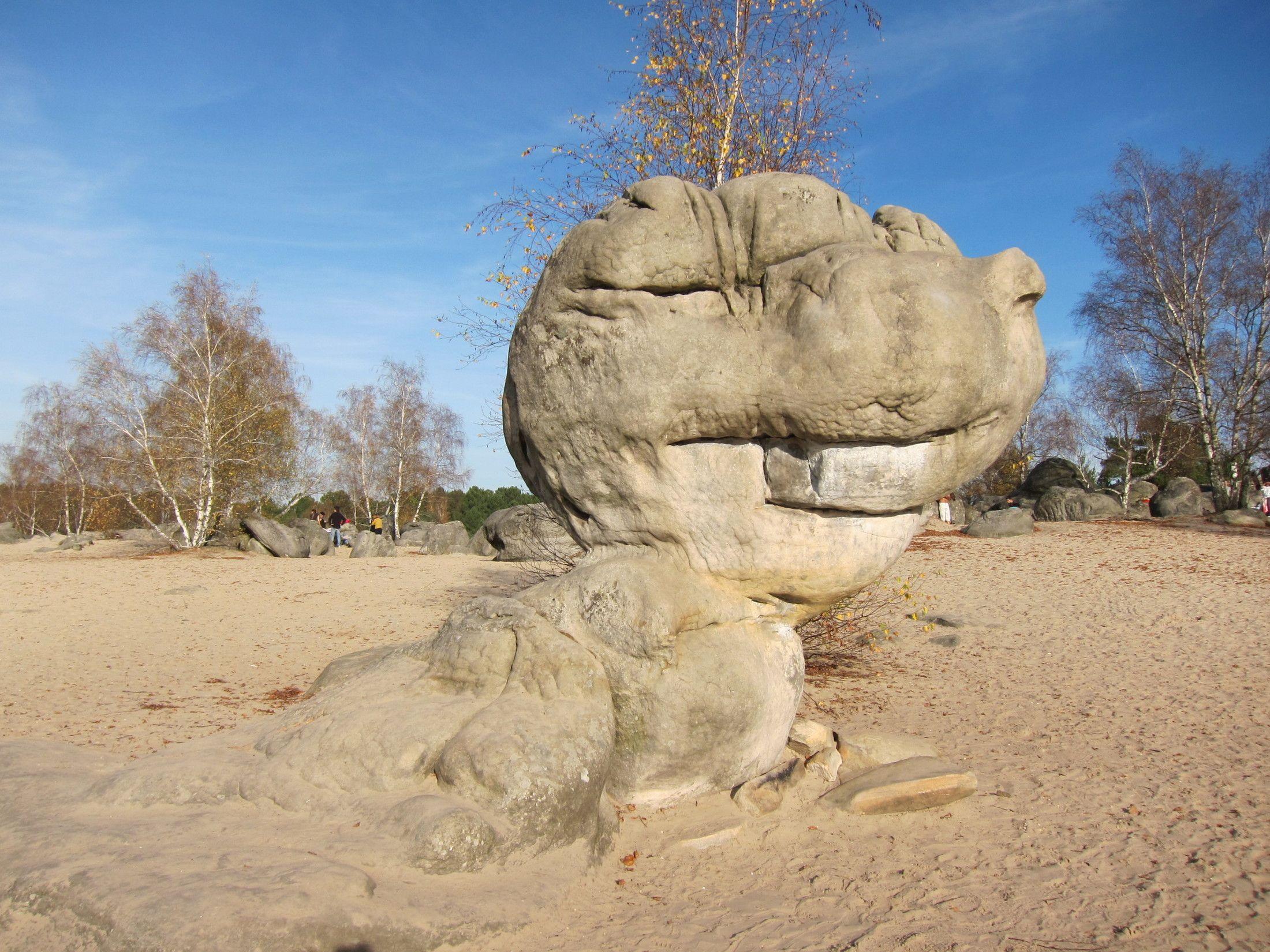 法國楓丹白露 – 天然抱石場