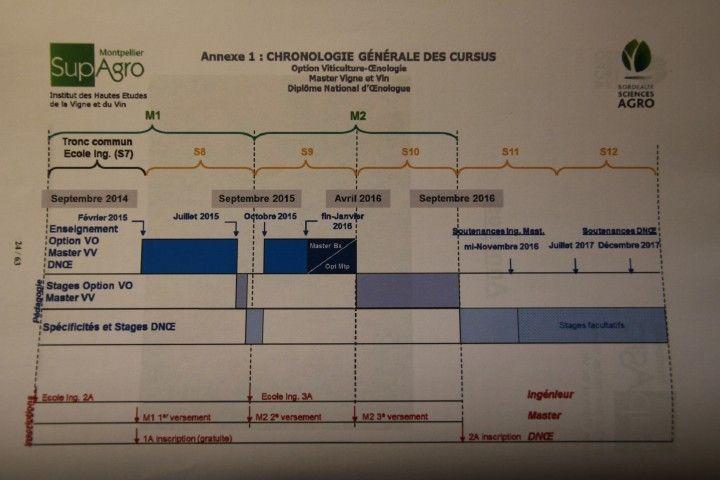 法國國家釀酒師(DNO)和葡萄與葡萄樹碩士(Master Vigne et Vin)雙學位,兩年課程的時程表
