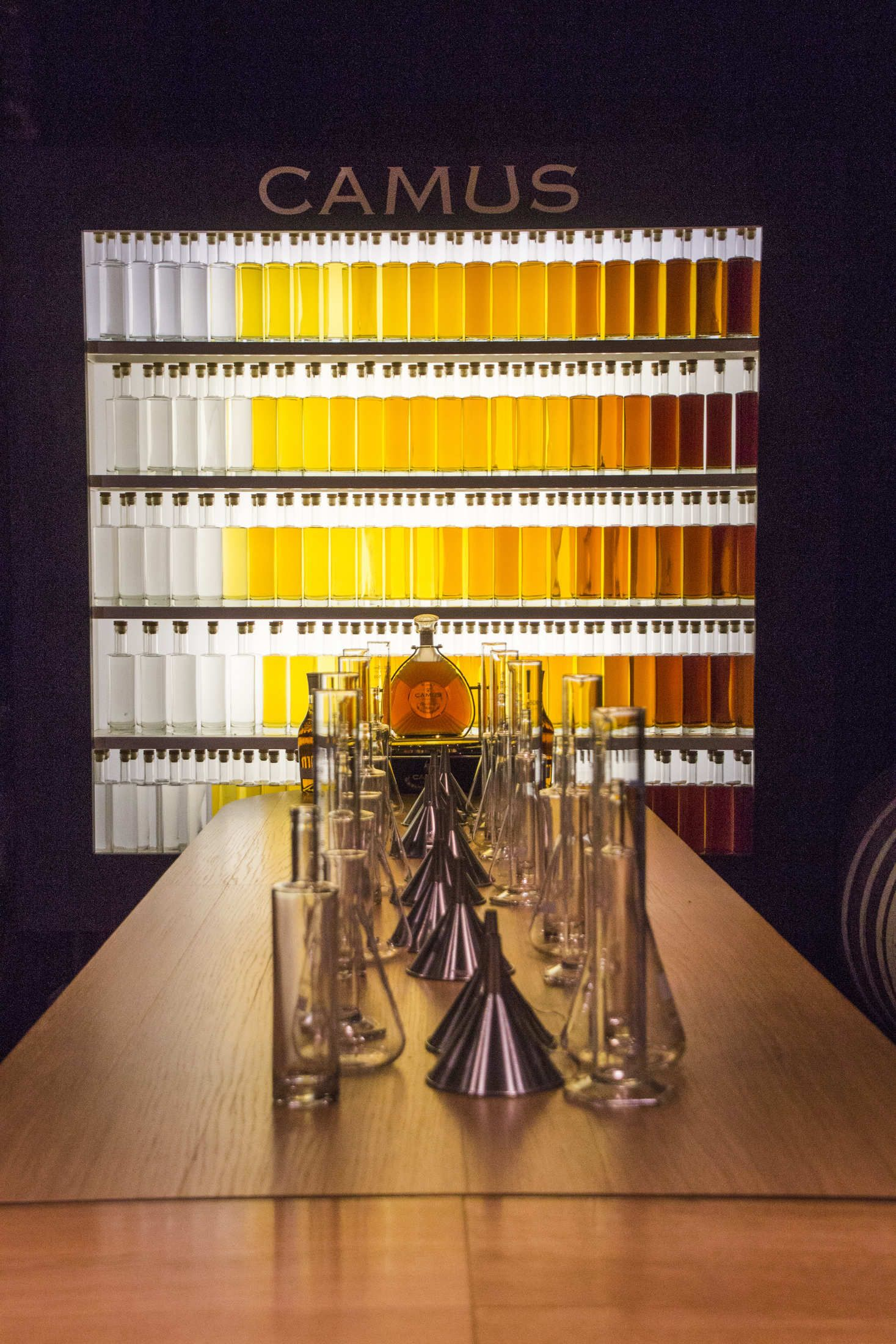 【法國】第一推薦 – 來干邑必參觀的白蘭地酒廠 Camus(卡慕)