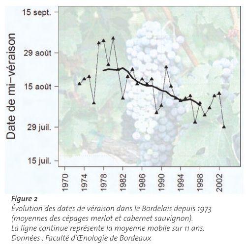 圖3:30年來,波爾多紅葡萄變色期的日期,有越來越早的趨勢。